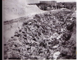des fosses humaines … des morceaux de cadavres